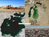 Hydrographic properties of separate residual basins of the Aral Sea: in situ observations and intercomparison